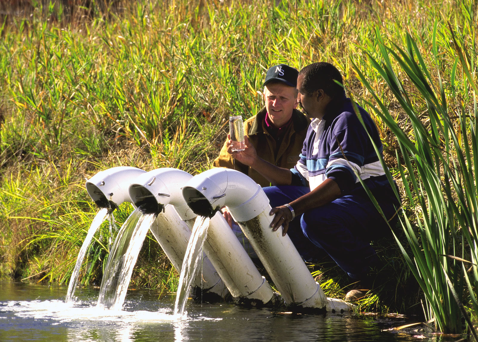 quality-water-filter-pond
