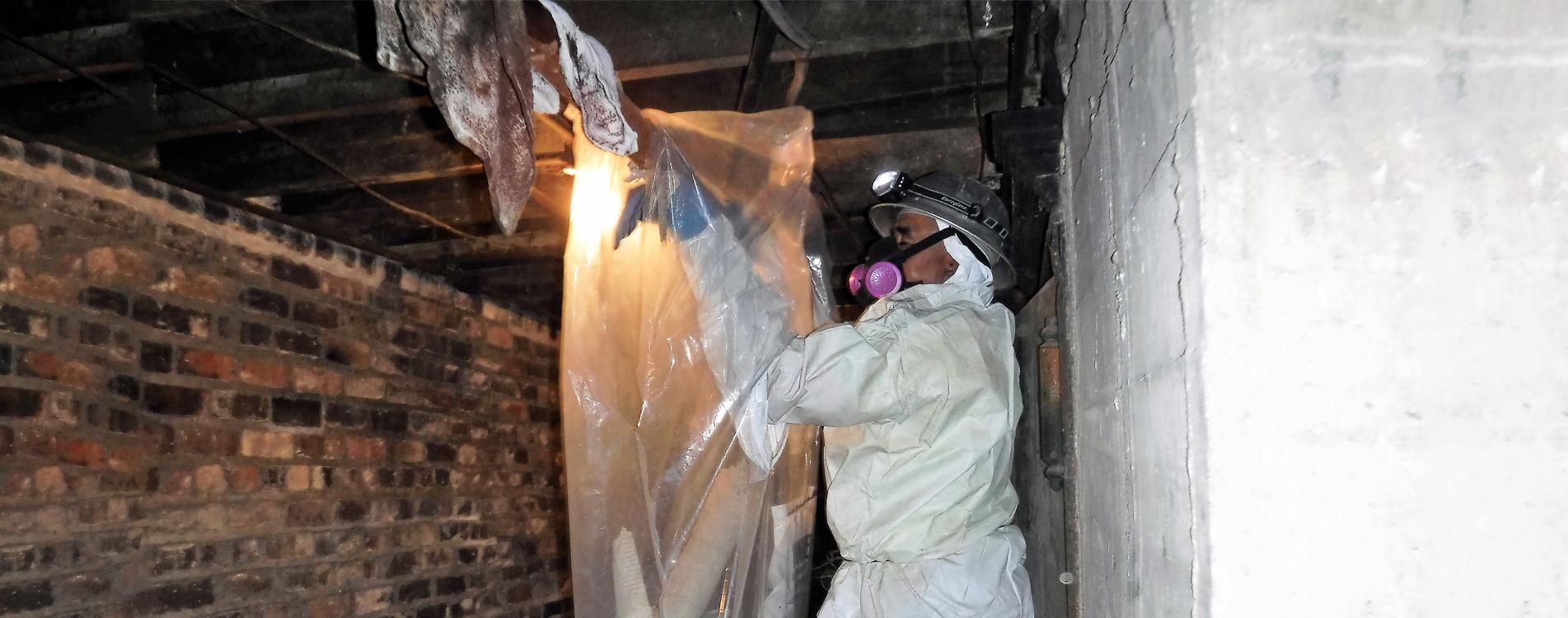 asbestos removal near me